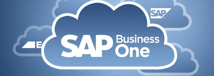 sap-business-one-en-la-nube