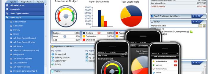 ¿Cómo es la implementación de SAP Buisness One en 2020?