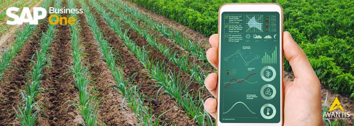 Los 3 desafíos de la Agroindustria en los momentos de la crisis actual - Avantis
