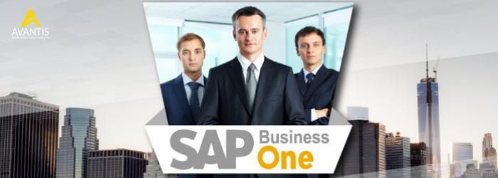 Principales características y funcionalidades del software SAP