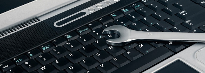 ¿Estándar o personalizado? Elige el mejor soporte de SAP Business One