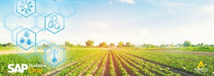 4 factores para la digitalización de la agroindustria