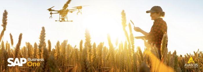 Descubre 5 tecnologías para innovar tu agroindustria